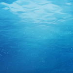 Underwater Near Ocean Surface – Free Download 1080p HD 60FPS Seamless Looping Video Background