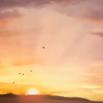 Sunrise, moving clouds and flying birds – Video Background Loop HD 1080P
