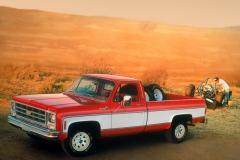 1979-Chevrolet-Truck-11