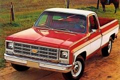 1979-Chevrolet-Truck-12