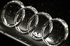 Audi-Logo-21