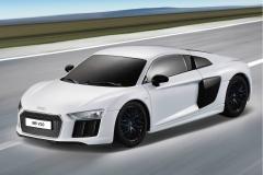 Audi-R8-Wei-26