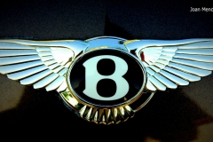 Bentley-Logo-30