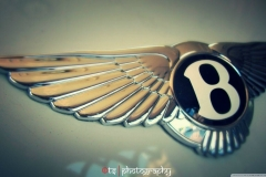 Bentley-Logo-36