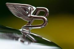 Bentley-Motors-Limited-31