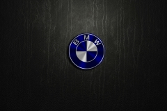 BMW-Logo-8