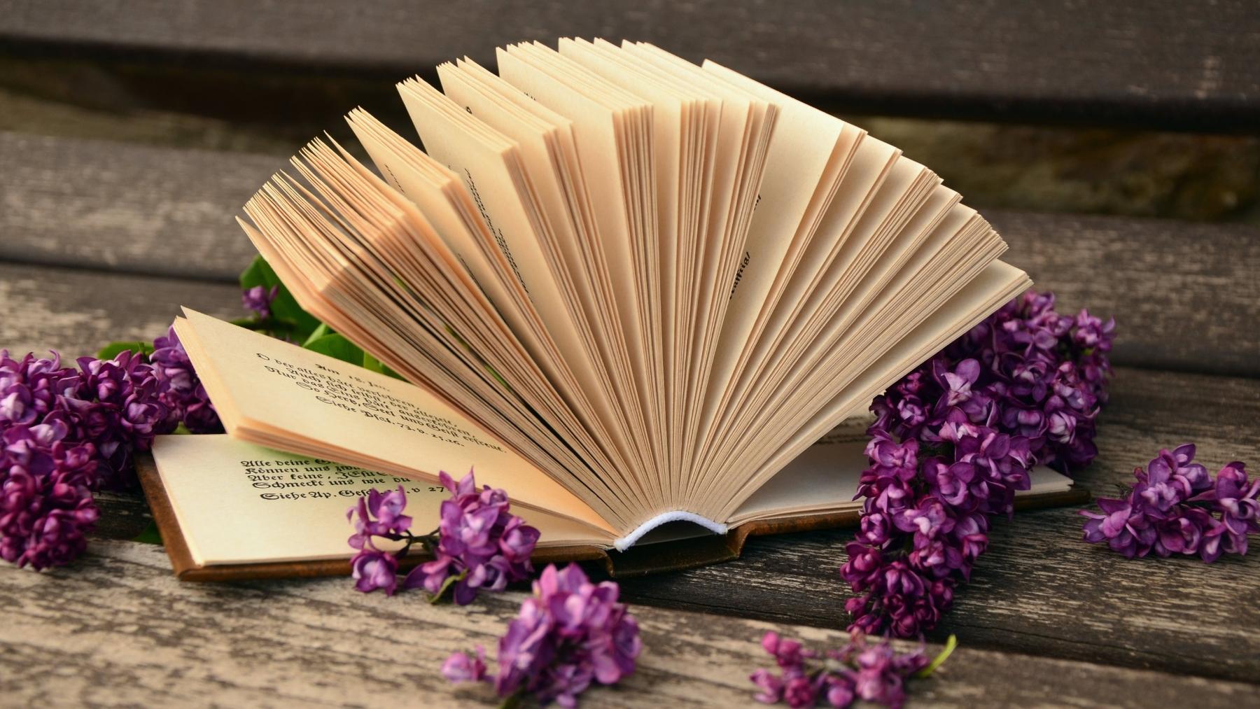 Books : Sustainability