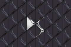 Citroen-Logo-9