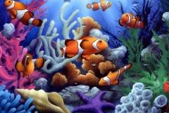 Clownfish-42