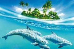 Dolphin-18