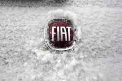 Fiat-Logo-6