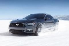 Mustang-2018-10