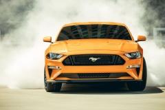 Mustang-2018-11