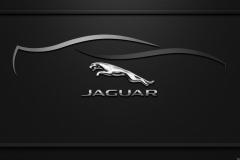 Jaguar-Logo-10