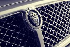 Jaguar-Logo-13