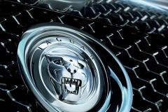 Jaguar-Logo-4