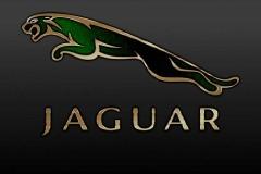 Jaguar-Logo-8