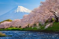 Mount-Fuji-18