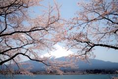Mount-Fuji-31