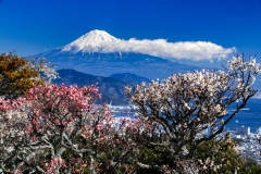 Mount-Fuji-32