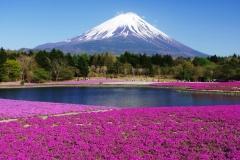 Mount-Fuji-44