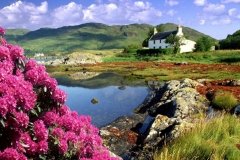 Scotland-68