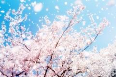 spring-2019-9