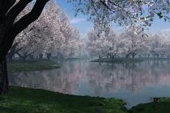 Spring-Season-21