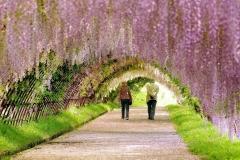 Spring-Season-38