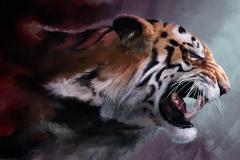 Tiger-38