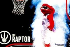 Toronto-Raptors-NBA-4