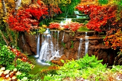 Autumn Waterfalls Colors Cascade Falls Forest Nature Waterfall Wallpaper Full Hd