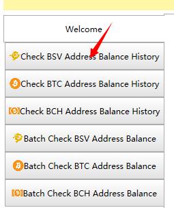 How to track Bitcoin SV (BSV) address balance? | YL Computing