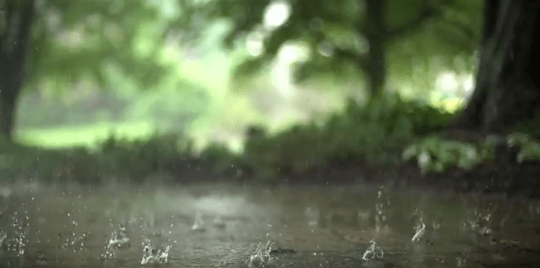 HD Background - Raindrops in Super Slow Motion, Nature
