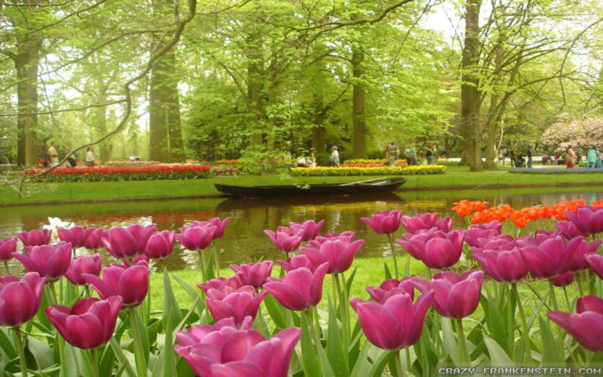 Flower Garden Wallpapers Hd Background Images Photos Pictures Yl Computing